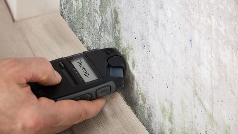 Gerät zur Messung der Feuchtigkeit im Mauerwerk an einer Wand mit Stockflecken