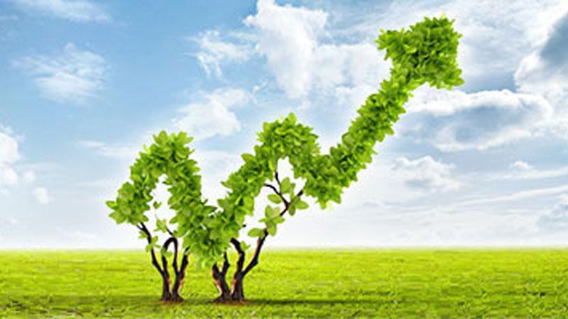 Grüner Wachstumspfeil aus grünen Blättern.