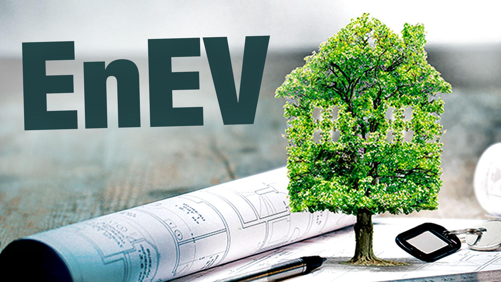 """Baum, der einer Bauzeichnung entspringt; darüber der Begriff """"EnEV""""."""
