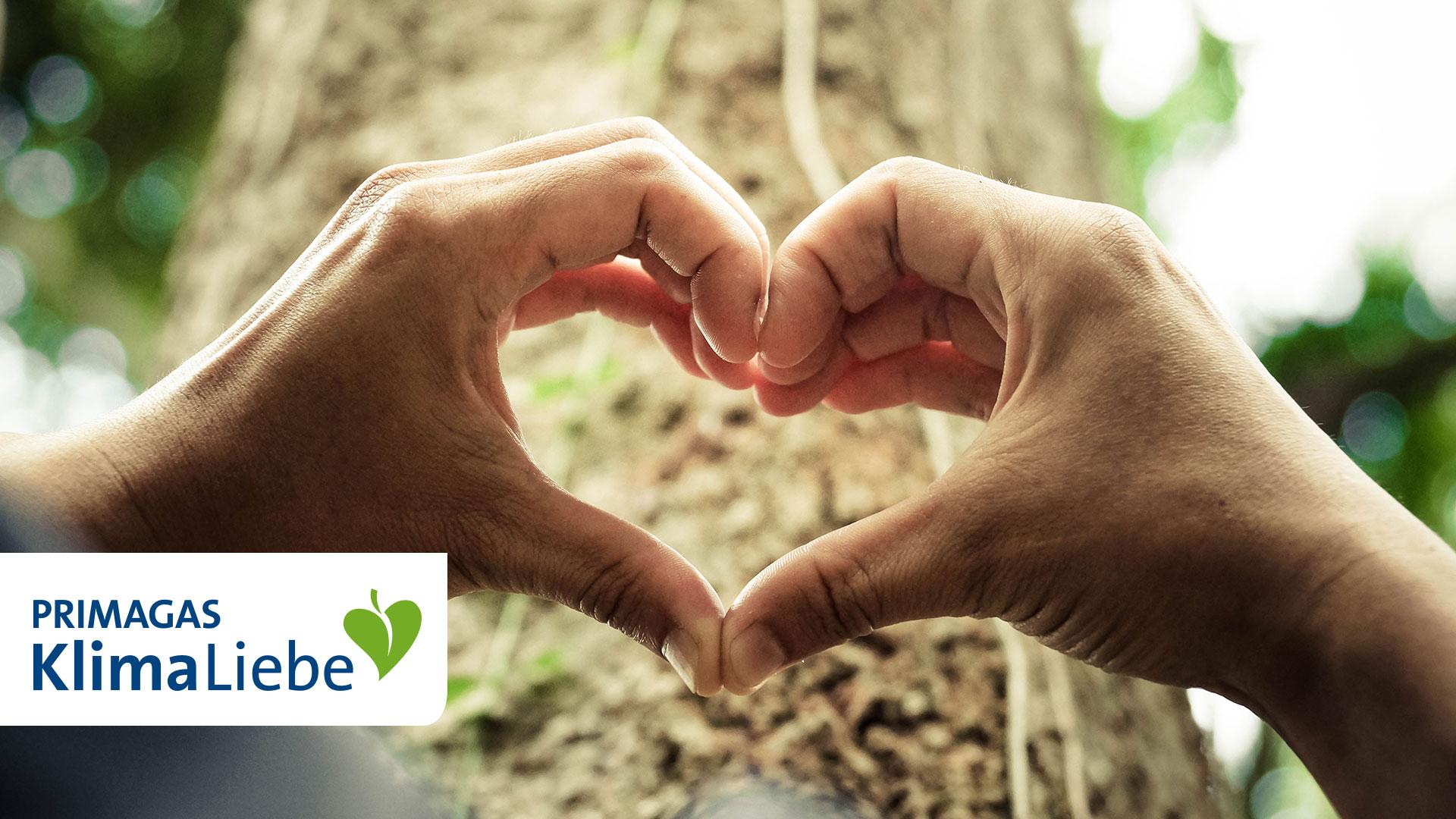 Hände, die ein Herz formen, vor Baumstamm, mit Logo PRIMAGAS KlimaLiebe.